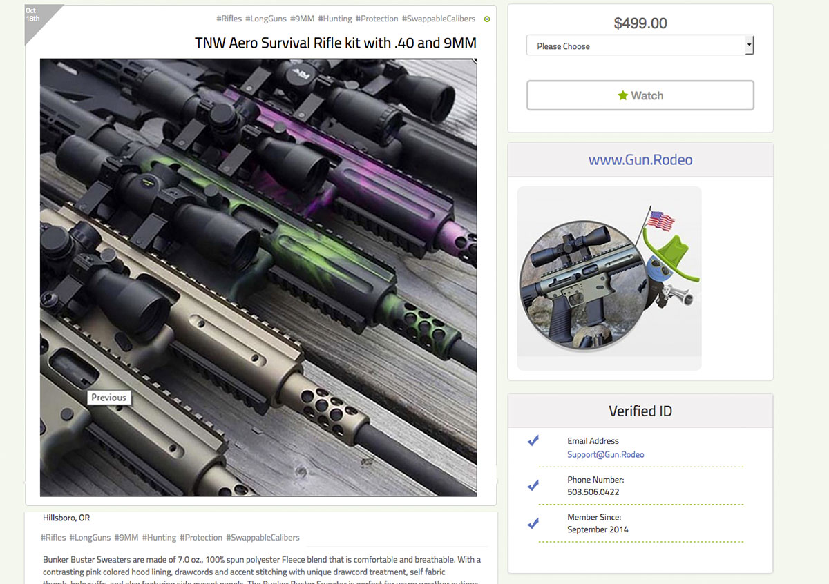 Gun.Rodeo's Pro-TOGO: We'll deliver your dream website.